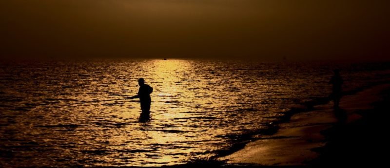 A la pêche à la ligne