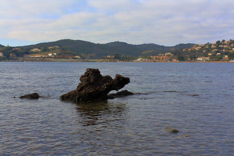 Le monstre de la baie d'Agay
