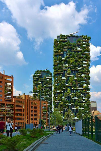 Forêt verticale