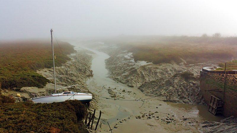 Marée basse dans la brume