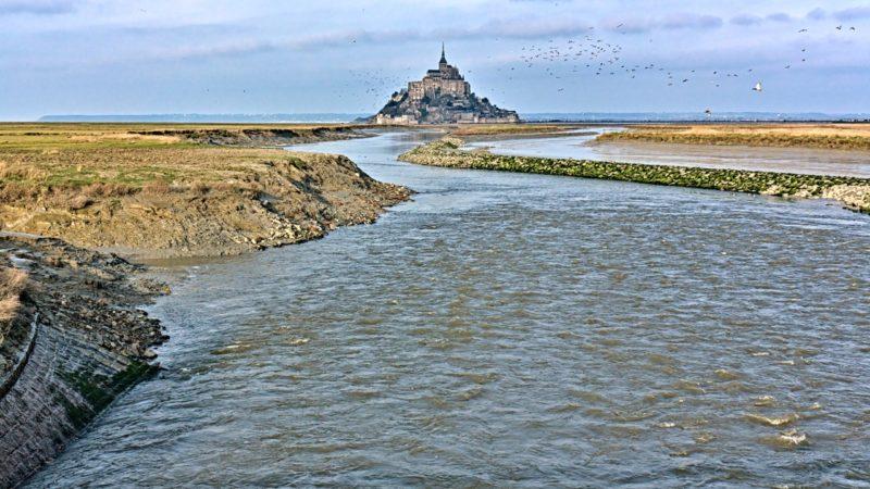 Nuée d'oiseaux sur le Mont-Saint-Michel